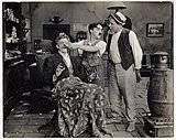 Medium sunnyside 3